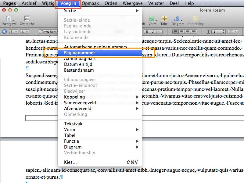 Werken met secties in Apple Pages