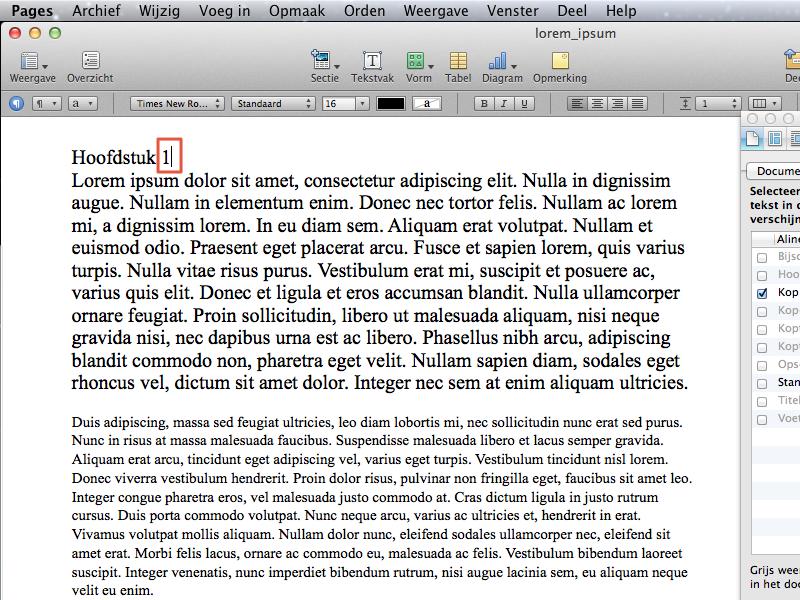 Werken met stijlen en inhoudsopgave in Apple Pages
